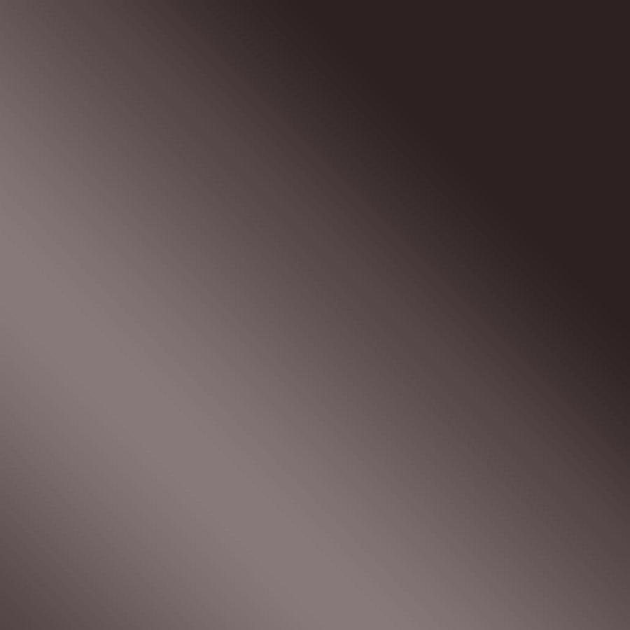 Wandpaneel 10125 DECO ANTHRACITE Spiegel Glanz-Optik Schwarz